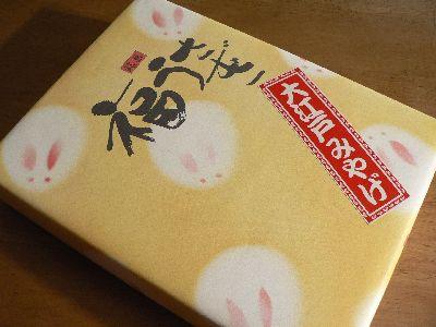 060909fukuusagi-package.JPG