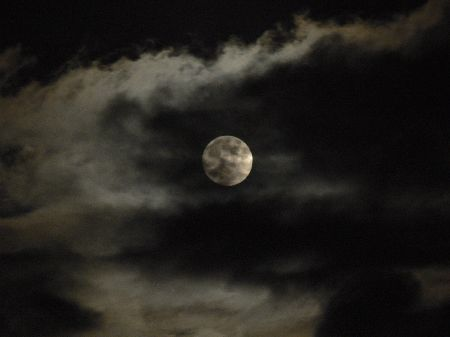 061006tsukimi-moon-incloud.JPG