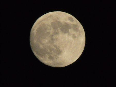 061006tsukimi-moon3.JPG