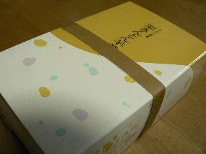 061016kintonyou-pack.JPG