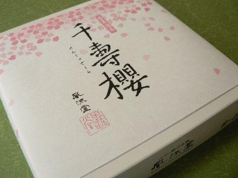 070404furyusakura1.JPG