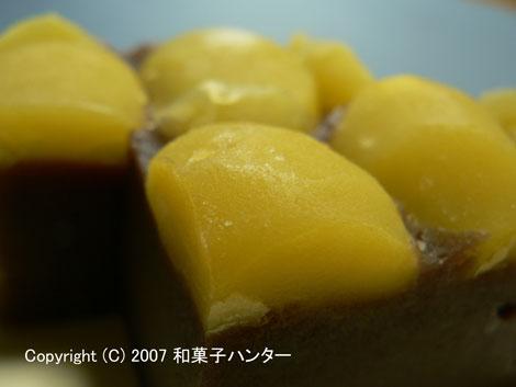 071007kuri5.jpg
