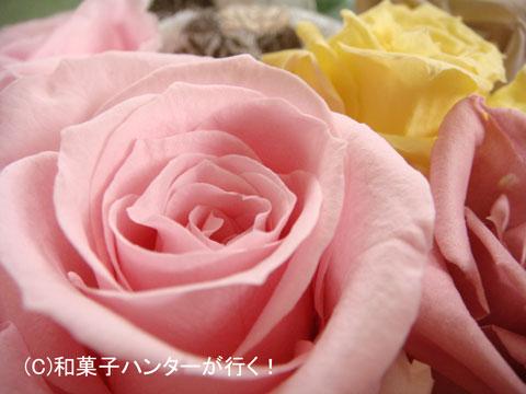 080709hibiya14.jpg