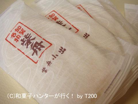 080713shibafune4.jpg