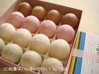 可愛い和菓子の紙ふうせん:菓匠高木屋 / 金沢和菓子 file 018