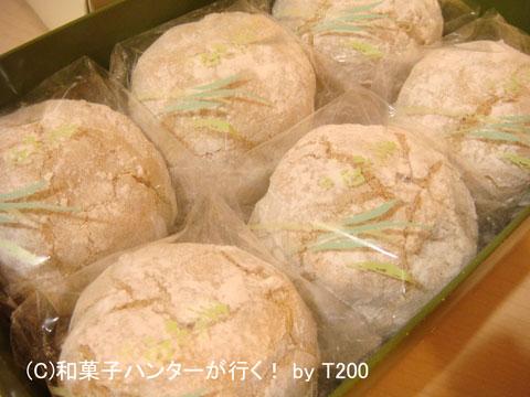 080912mugifue1.jpg