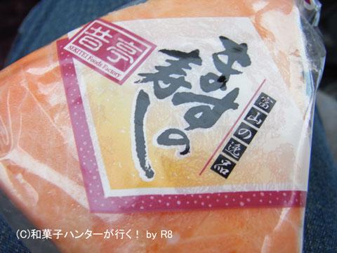 080929sushi8.jpg