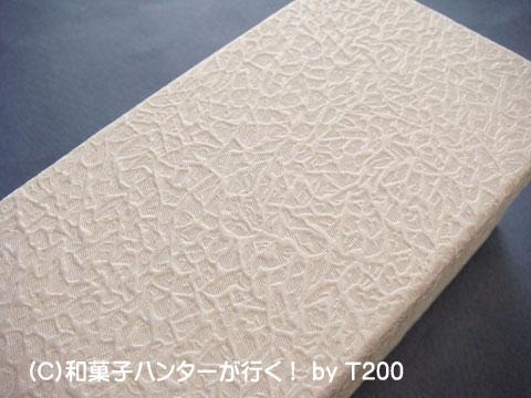 090101chiyo4.jpg