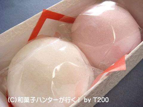 090101chiyo6.jpg