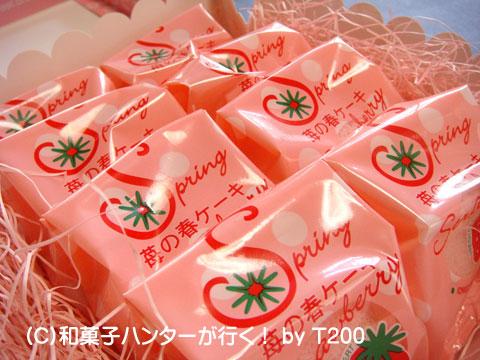 090121ichigo1.jpg
