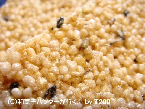 090223okoshi5.jpg