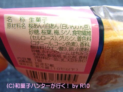 090322sakura2.jpg