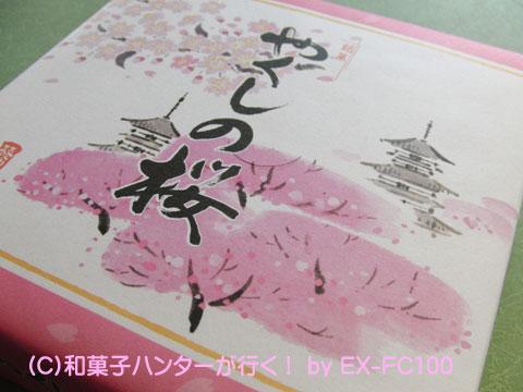 090401yakushi1.jpg