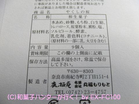 090401yakushi5.jpg