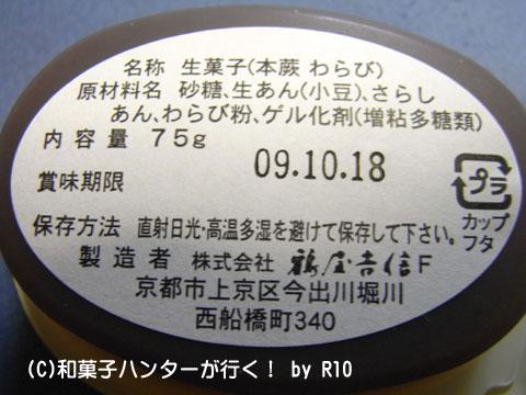 090810warabi3.jpg