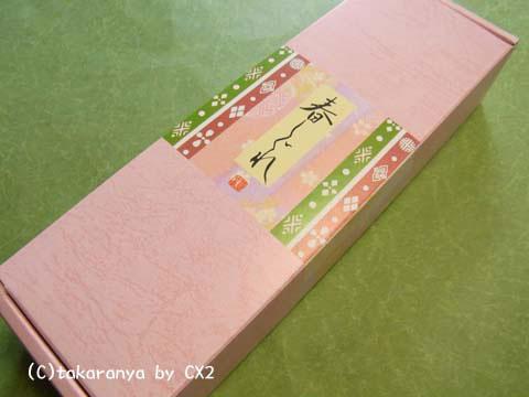 100403harushigure1.jpg