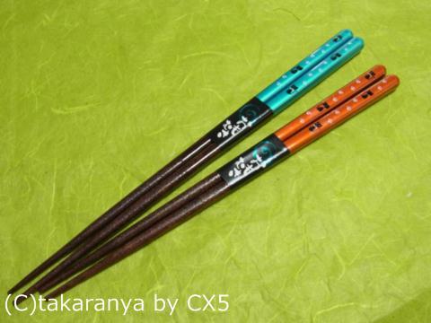 110522kurashiki5.jpg