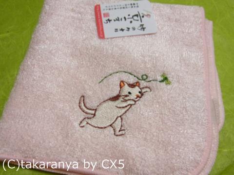110522kurashiki9.jpg