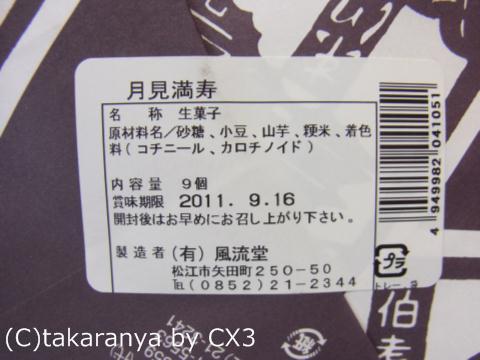 110913furyudo9.jpg