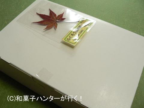 070410fukuro1.jpg