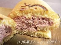 20070102/070111ichigobatake2.jpg