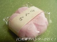 20070102/070224sakura1.jpg