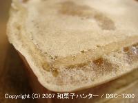 20071112/071130imo1.jpg