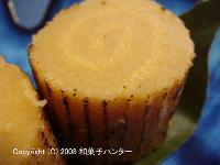20080106/080116date0.jpg
