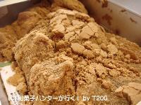 20090103/090107warabi1.jpg
