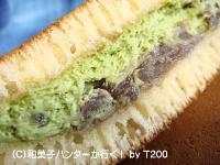 20090103/090119sakura16.jpg
