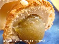 20090103/090126umebozu4.jpg