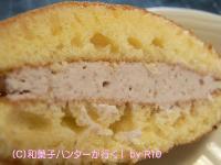 20090103/090322sakura4.jpg